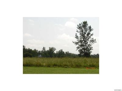 Erie County Residential Lots & Land A-Active: 10220 Shamus Lane North