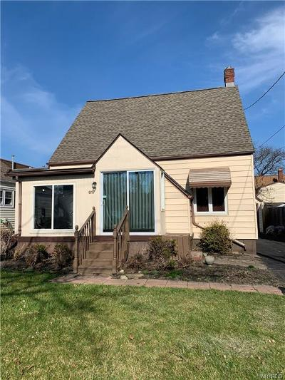 Niagara Falls NY Single Family Home U-Under Contract: $66,000