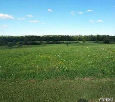 Genesee County Residential Lots & Land U-Under Contract: Francis Road