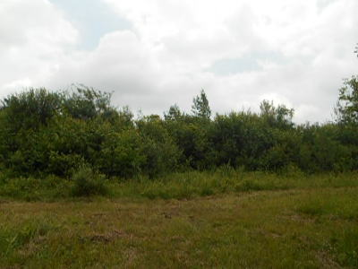 Erie County Residential Lots & Land A-Active: Bullis Road