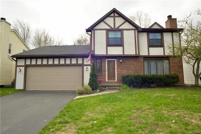 Amherst Single Family Home A-Active: 224 Robin Road