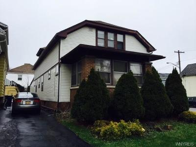 Buffalo Single Family Home A-Active: 217 Comstock Avenue