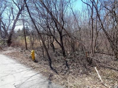 Hamburg Residential Lots & Land A-Active: Woodlawn Avenue West