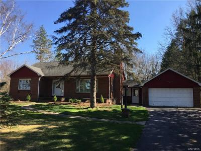 Clarence Single Family Home A-Active: 10525 Greiner Road