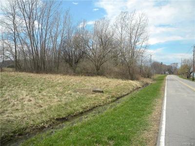 Niagara County Residential Lots & Land A-Active: V/L Lake Road