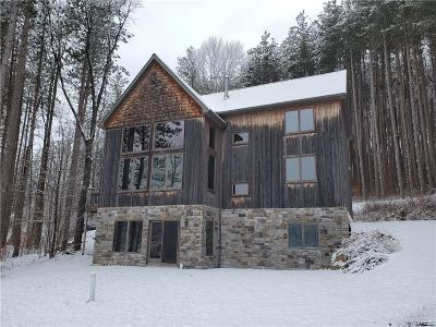 Ellicottville Single Family Home A-Active: 6864 Horn Hill Road