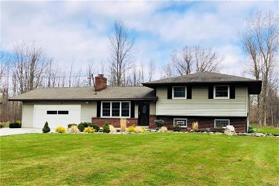 Single Family Home U-Under Contract: 9180 Wolcott Road