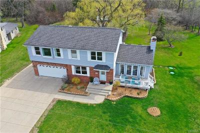 Grand Island Single Family Home A-Active: 3757 West River Road