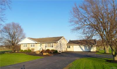 Genesee County Single Family Home U-Under Contract: 176 Bloomingdale Road