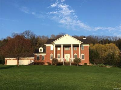 Boston Single Family Home For Sale: 6405 Hillcroft Drive