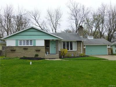 Grand Island Single Family Home A-Active: 1498 Red Jacket Road