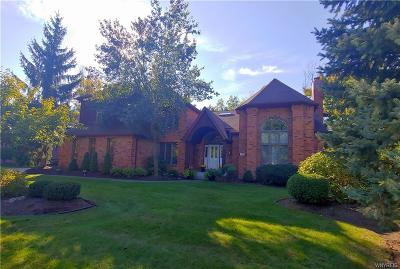 Amherst Single Family Home For Sale: 123 Roxbury Park