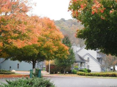 Ellicottville Condo/Townhouse A-Active: 92 Wildflower Apts