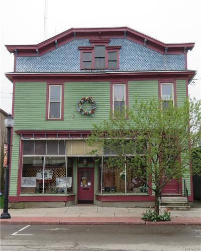 Single Family Home For Sale: 48 N Main Street