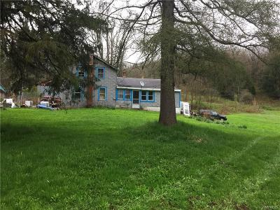 Farm & Ranch For Sale: 6876 Route 219