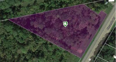 Residential Lots & Land A-Active: 8994 Alexander Road