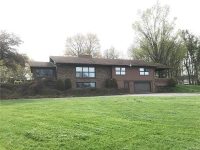 Orchard Park Single Family Home For Sale: 13 Westview Pl