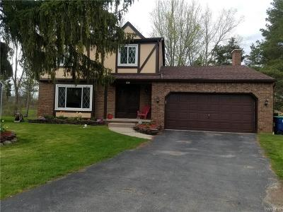 Amherst Single Family Home A-Active: 947 Robin Road
