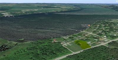 Castile Residential Lots & Land A-Active: Lake Shore Drive