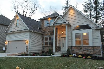 Amherst Single Family Home For Sale: 15 Avalon Meadows