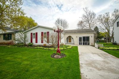 Amherst Single Family Home A-Active: 133 Jeffrey Drive