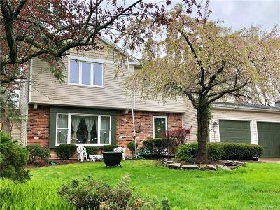 Williamsville Single Family Home For Sale: 27 Old Spring Lane