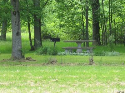 Orleans County Residential Lots & Land A-Active: V/L Telegraph Road