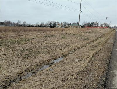 Niagara County Residential Lots & Land A-Active: 1a Cam-Lkpt Townline Road