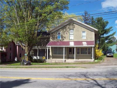 Genesee County Multi Family 2-4 A-Active: 7922 Alleghany Road