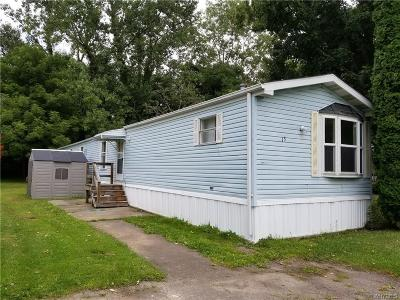 Orleans County Single Family Home For Sale: 13 Applegate
