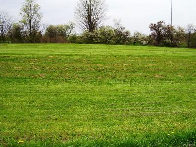 Niagara County Residential Lots & Land A-Active: 4231 Lockport Road