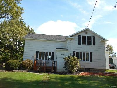 Allegany County, Cattaraugus County Single Family Home A-Active: 11454 West Perrysburg Road