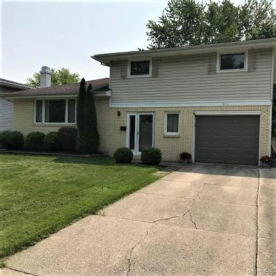 Amherst Single Family Home A-Active: 411 Tonawanda Creek Road