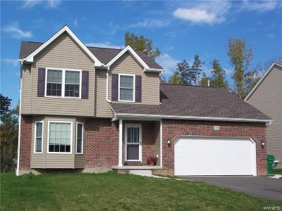 Erie County Single Family Home A-Active: 3666 Delilah Lane