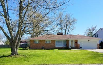 Grand Island Single Family Home A-Active: 1534 Red Jacket Road