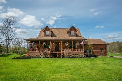 Arcade Single Family Home A-Active: 541 Genesee Road