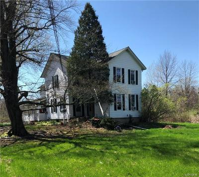 Lewiston Single Family Home For Sale: 1102 Pletcher Road