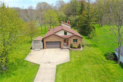 Erie County Single Family Home A-Active: 1112 Davis Road