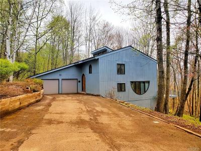 Ellicottville Single Family Home A-Active: 6806 Buchan Road