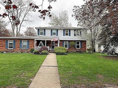 Amherst Single Family Home A-Active: 245 North Brier Road
