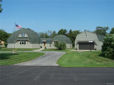 Erie County Single Family Home A-Active: 11770 Stage