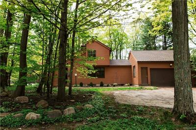 Orchard Park Single Family Home A-Active: 28 Swallow Lane