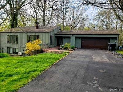 Niagara County Single Family Home For Sale: 3191 Creek Road