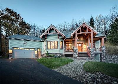 Ellicottville Single Family Home A-Active: 6652 Plum Creek Road