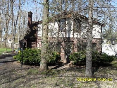 Grand Island Single Family Home A-Active: 3298 Greenway Road
