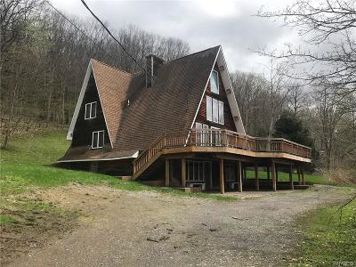 Ellicottville Single Family Home A-Active: 6044 Sugartown Road