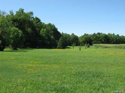 Genesee County Residential Lots & Land A-Active: 10306 Bethany Townline Road