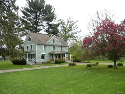 Allegany County, Cattaraugus County Single Family Home C-Continue Show: 4972 Creek Road