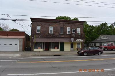 Dayton NY Commercial For Sale: $109,900