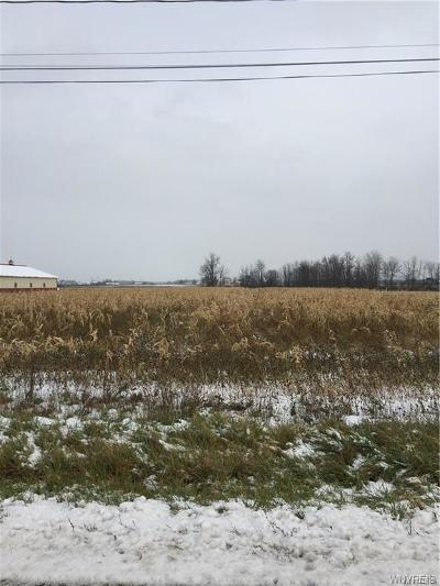 Residential Lots & Land A-Active: Meahl Road East